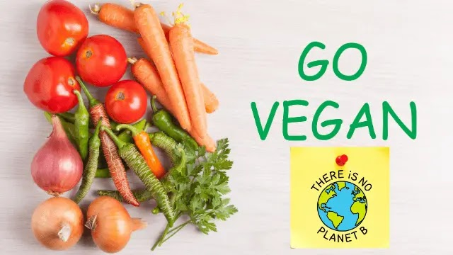 How can veganism help the environment
