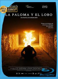La Paloma y el Lobo (2021) HD [1080p] Latino [GoogleDrive] PGD