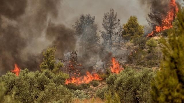 Σε κατάσταση κινδύνου (3) για πυρκαγιές η Αργολίδα το Σάββατο 24 Ιουλίου