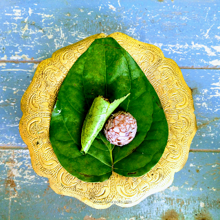 Tamul Paan served in a bell metal utensil called Bota