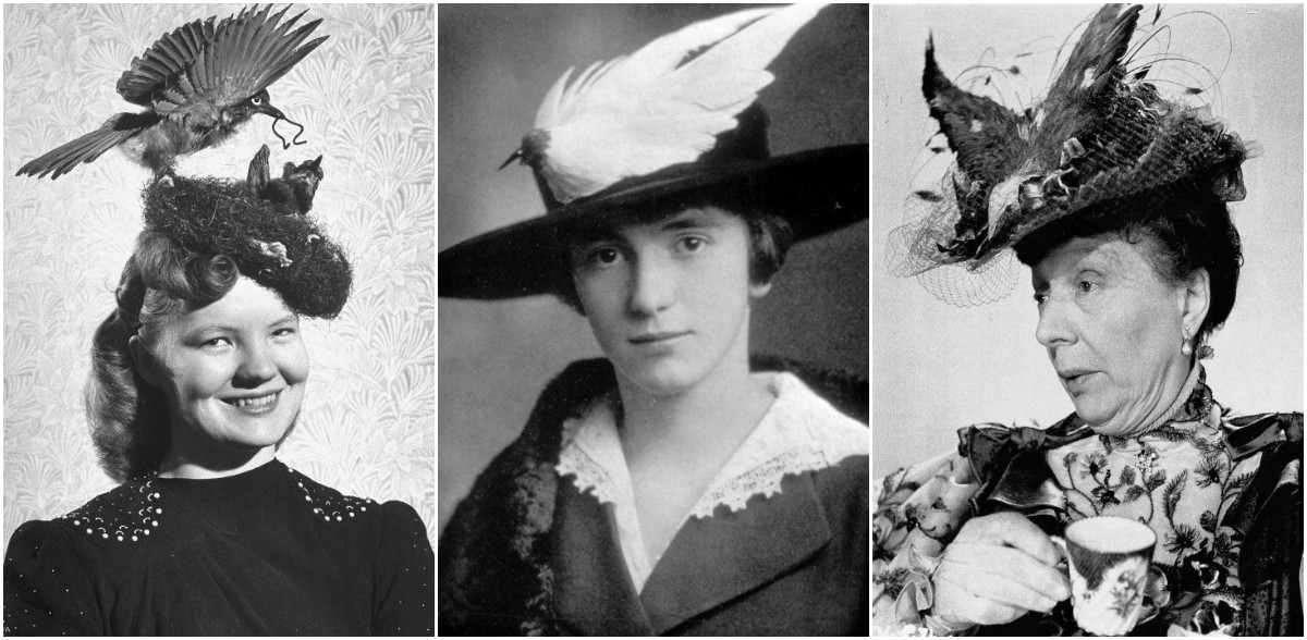 Vintage Portraits of Women Wearing Bird Hats From the Early 20th Century