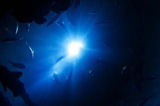 Bolygónk, a Föld: Mély óceánok (teljes film)
