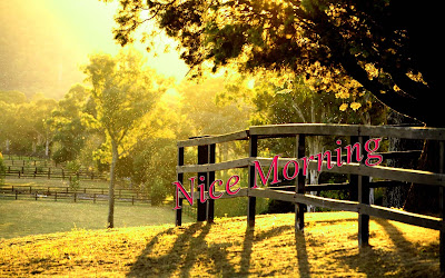 nice-morninglovely-walls-pics-for-best-wishes
