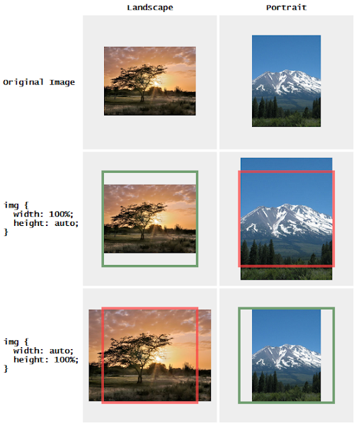 Proportionally Resized Images