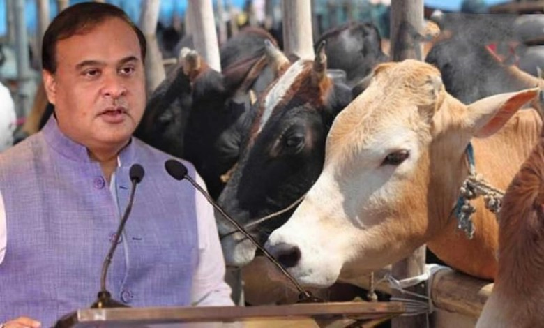 Beef is banned in 5 km of the temple and in the Hindu-dominated area. new law of Himanta Bishwa Sharma