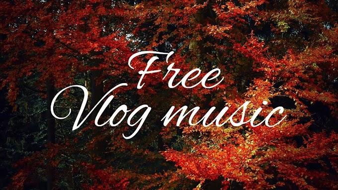Calm| Dear Autumn | Acoustic Free Vlog Music | Travel Background Music Instrumental