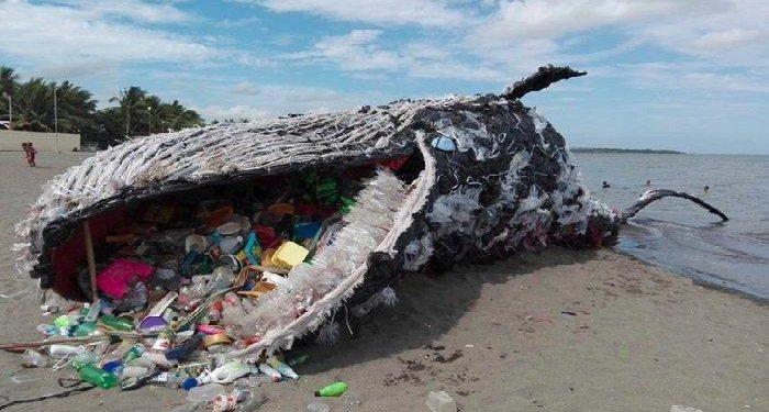 Paus mati Terdampar karena makan plastik