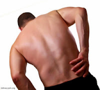 Mengenal Penyakit Gagal Ginjal