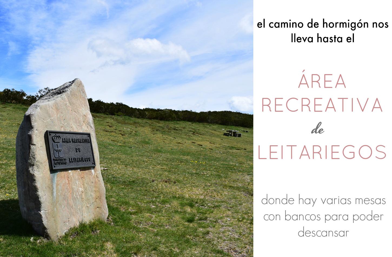 AREA RECREATIVA DE LEITARIEGOS