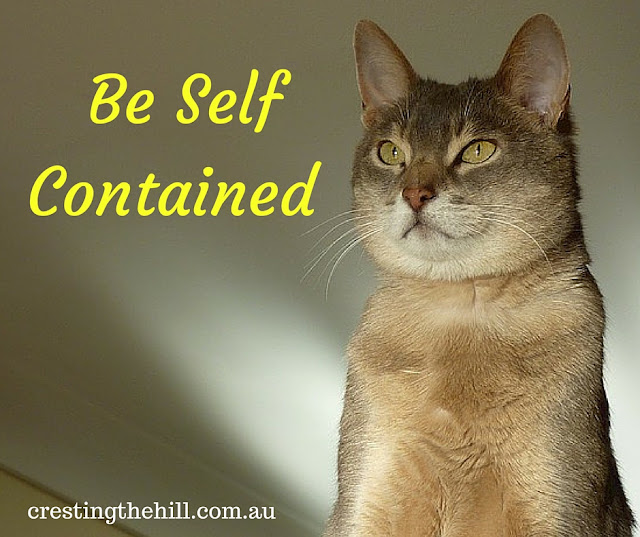 don't depend on others for your self-worth ~ be independent and self contained