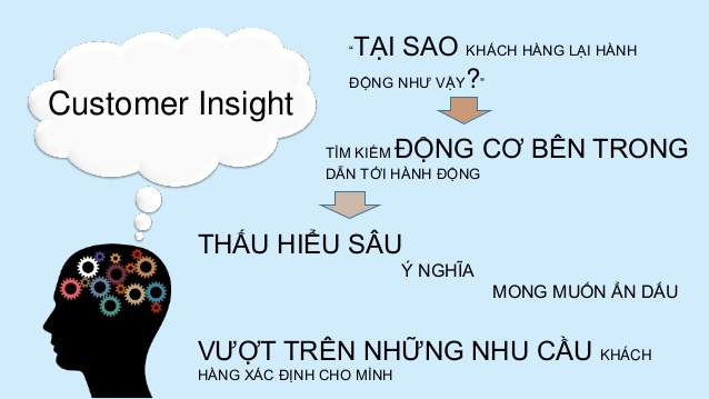 Customer insight là gì? Làm sao để có được insight?