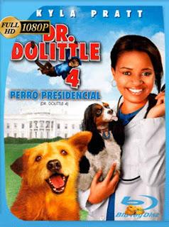Dr. Dolittle 4 [2008] HD [1080p] Latino [GoogleDrive] SilvestreHD