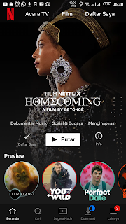 Netflix home screen