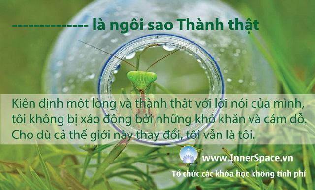 TOI-LA-NGOI-SAO-BINH-YEN-THANH-THAT