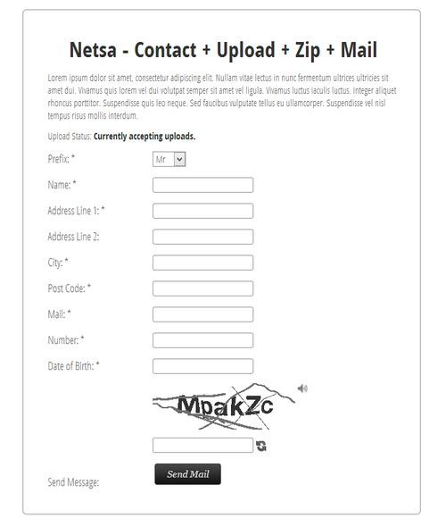 Netsa – Contact + Upload + Zip + Mail