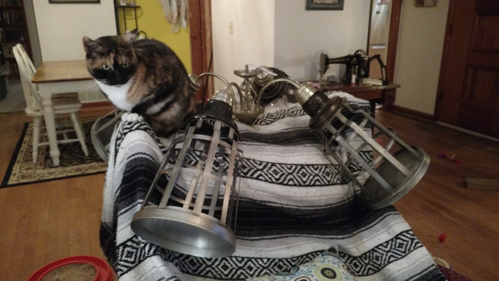 Missys homemaking adventures ceiling fan makeover he is also building a steam punk themed bookshelf and matching cat tree for his office it will be made from wood and pipes i have to make the cat beds of mozeypictures Choice Image