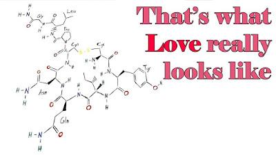 the hormone of love