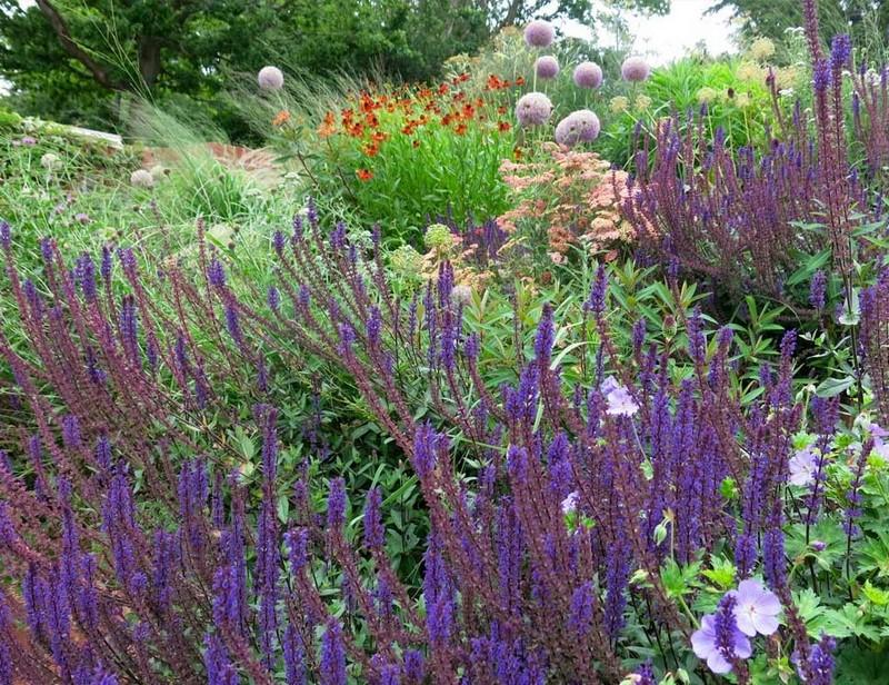 Cranbrook, Kent. Jardín casa de campo diseñada por Jo Thompson