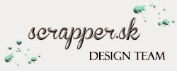 DESIGN TEAM SCRAPPER 05/2013 - 07/2015