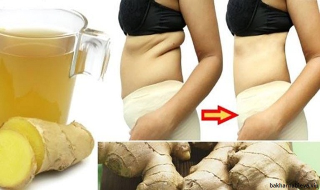 Natural Herbs That Can Accelerate The Fat Loss Process