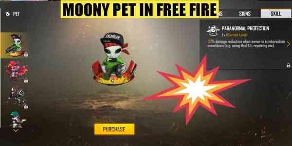 moony-pet-in-free-fire