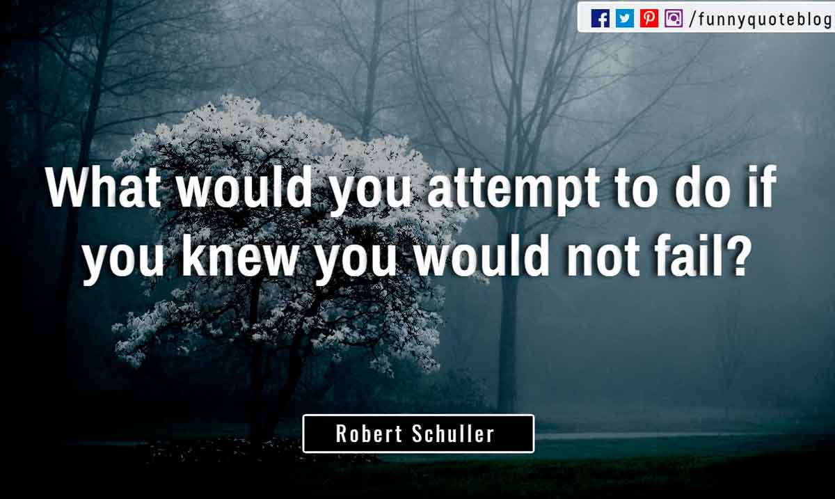 """What would you attempt to do if you knew you would not fail?"" ― Robert Schuller Quote"