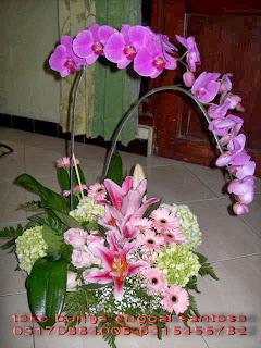 bunga meja ( bunga anggrek bulan)