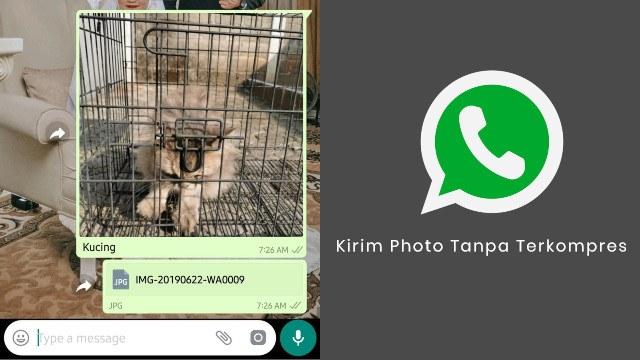 Tips Kirim Foto Kualitas Tinggi di Whatsapp Tanpa Pecah