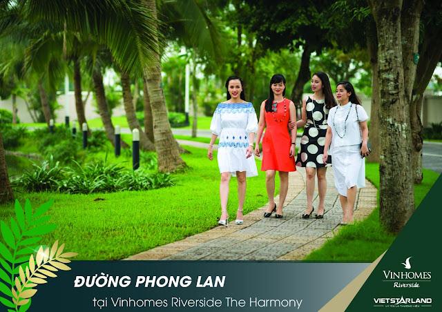 Đường Phong Lan