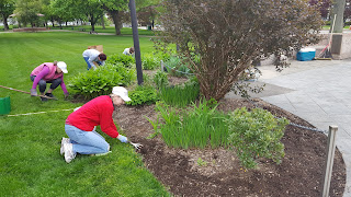 volunteers from the Franklin Garden Club were hard at work on the grounds  at the Town Common with help from some of the Newcomers Club