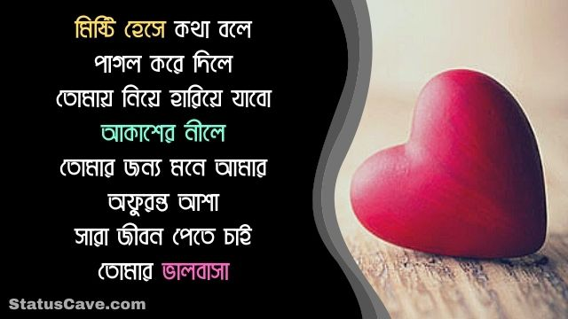 Bangla Romantic Status 5