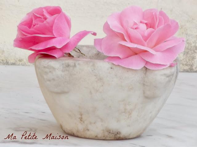 Rose rosa nel mortaio
