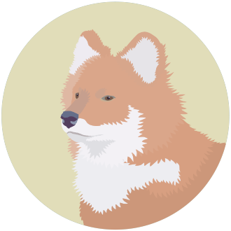 Красный волк - маленькая картинка