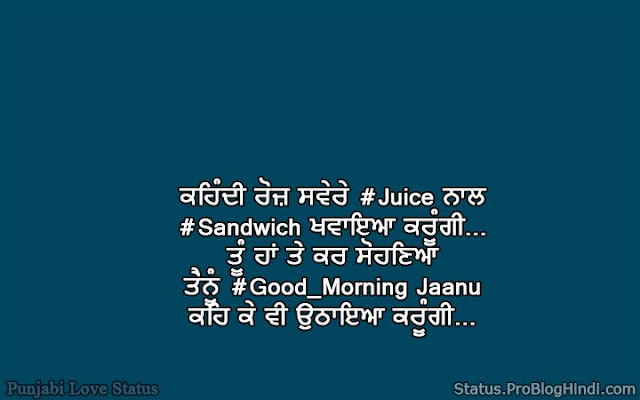 punjabi couple status quotes