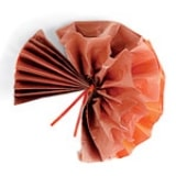 Tissue Paper Turkey - Step 6