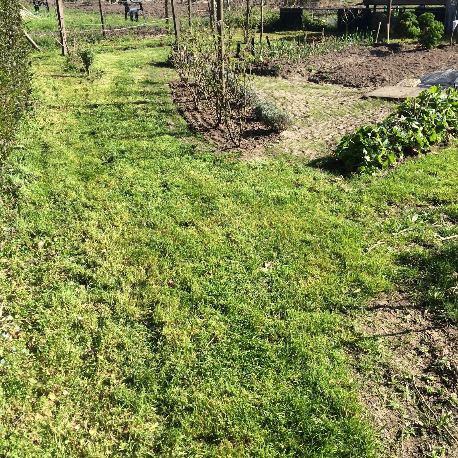 gras maaien moestuin volkstuin lente