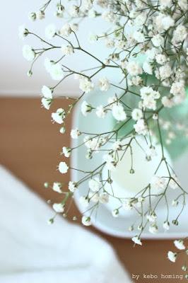 Blumen am Freitag, flowerday mit Schleierkraut, clean living, puristisch, Bad, Dekoration, Südtiroler Food- und Lifestyleblog kebo homing