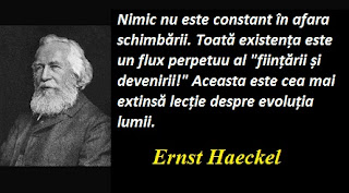 Maxima zilei: 16 februarie - Ernst Haeckel