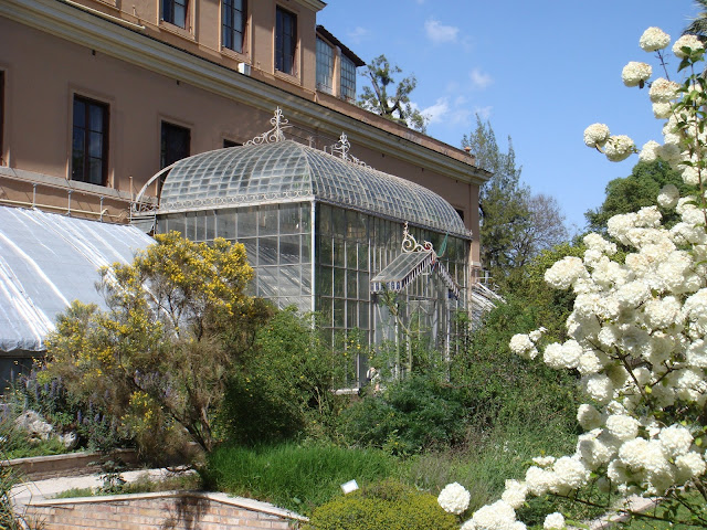 Orto Botanico di Roma - Ph Stefano Bolognini - Opera propria, Attribution, https://commons.wikimedia.org/w/index.php?curid=3912561