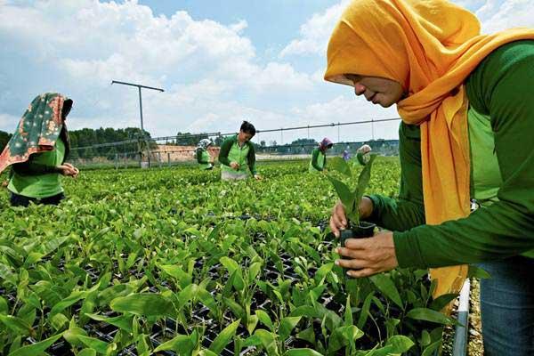 Bappenas: Riau Dapat Cetak Pertumbuhan Ekonomi Tinggi