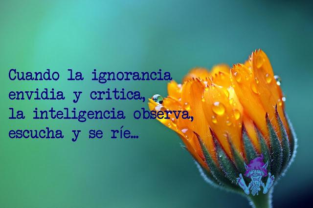 Cuando la ignorancia critica, la inteligencia observa y ríe