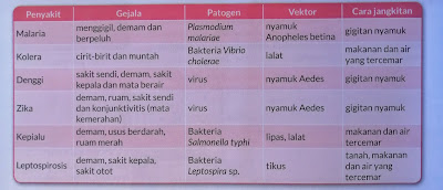 beberapa jenis penyakit, gejala, patogen, vektor dan cara jangkitan