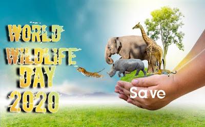 World wildlife day images - World wildlife day Wishing picture 2020