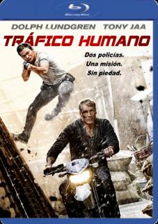 Tráfico Humano (2014) DVDRip Latino