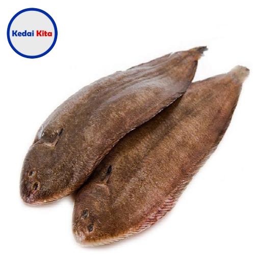 Ikan Lidah 500 Gram