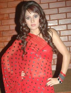 Liza Malik Pictures in Red Transparent Saree
