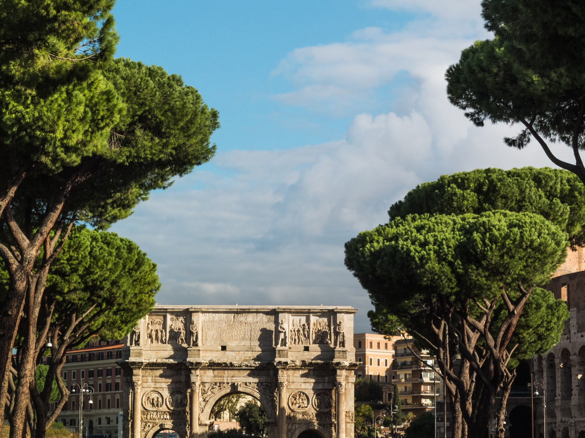 The Arch of Constantine with a row of umbrella pines on either side.
