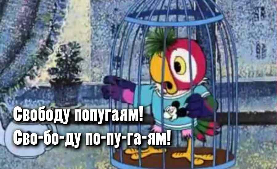 Цитаты из Мультфильма «Попугай Кеша»