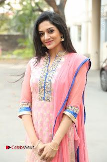 Actress Vimala Raman Stills in Beautiful Pink Salwar Kameez at (ONV) Om Namo Venkatesaya Press Meet  0232.JPG