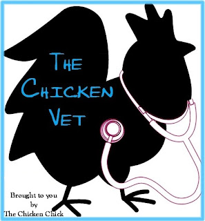 While researching a blog article in March 2012, I stumbled upon a blog authored by a real live chicken veterinarian and I felt as though I had hit the lottery!